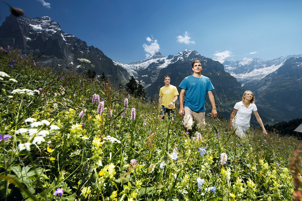 Hiking Grindelwald