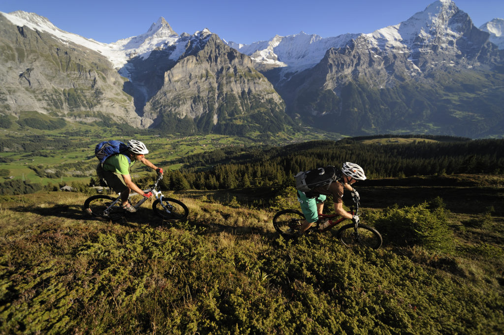 Mountainbike Single Trails Grindelwald